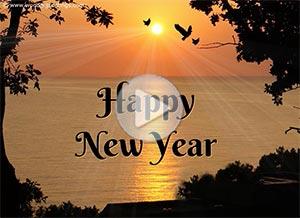 Imagen de New year para compartir gratis. 365 sunrises for you