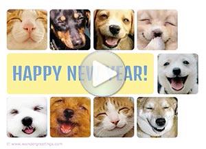 Imagen de New year para compartir gratis. A smile every day
