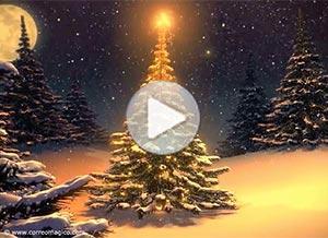 Christmas ecard. Happy Holidays